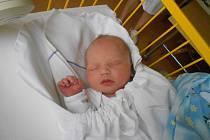 VILIAM Dlugoš se narodil 11. listopadu s mírami 49 centimetrů a 3,17 kilogramů. S maminkou Alenou, tatínkem Radoslavem a sestřičkou Diankou bude bydlet v Mladé Boleslavi.