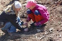 Den Země v Bělé pod Bezdězem. Děti nejprve sázely stromy, poté soutěžily a nakonec si opekly špekáčky.