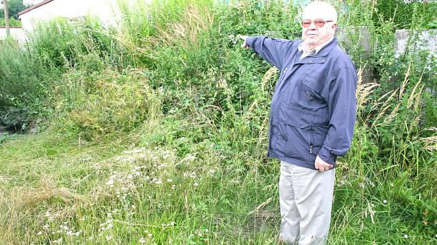 Majitel jedné z garáží, Richard Tláskal, ukazuje přerostlou trávu na pozemku města.