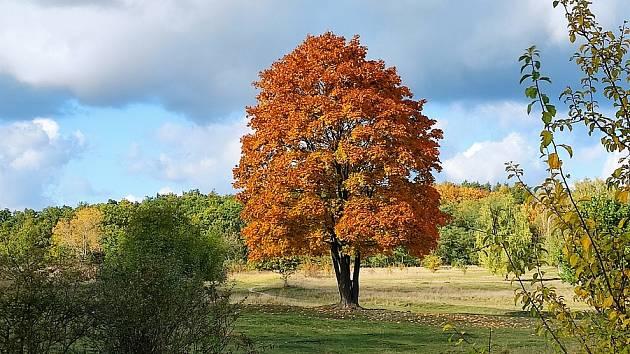 Štefan Lacek zachytil podzimní Radouč