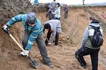 ZO Klenice v sobotu čistila pískový lom v Domousnici, kde budou v budoucnu hnízdit břehule a vlhy