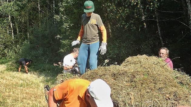 Děti z dětského domova v Krnsku pomáhali ochranářům přírody s čištěním louky u Ujkovic
