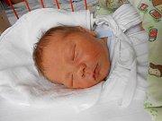 Vojtěch Kvajsar se narodil 21. listopadu mamince Tereze a tatínkovi Michalovi z Katusic. Vážil 4,14 kg a měřil 52 cm.