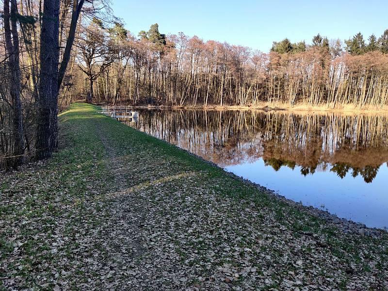 Vojenské lesy dokončily obnovu dvou rybníků v evropsky významné lokalitě