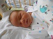 Emma Šimečková se narodila 3. listopadu, vážila 4,18 kg a měřila 52 cm. S maminkou Evou a tatínkem Jaroslavem bude bydlet v Mladé Boleslavi.
