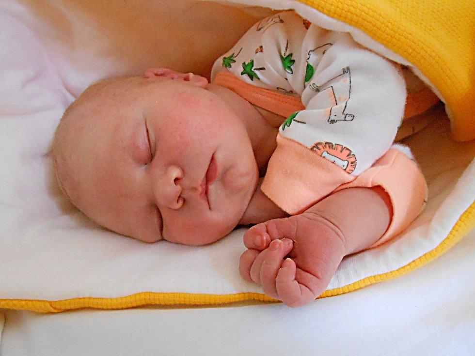 Jakub Šálek se narodil 24. listopadu 2018, vážil 4,08 kg a měřil 54 cm. S maminkou Renatou a tatínkem Vladimírem bude bydlet v Katusicích.