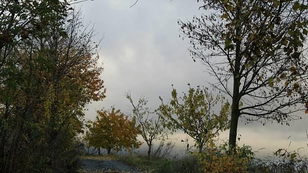 Podzim očima Lenky Hoffmannové