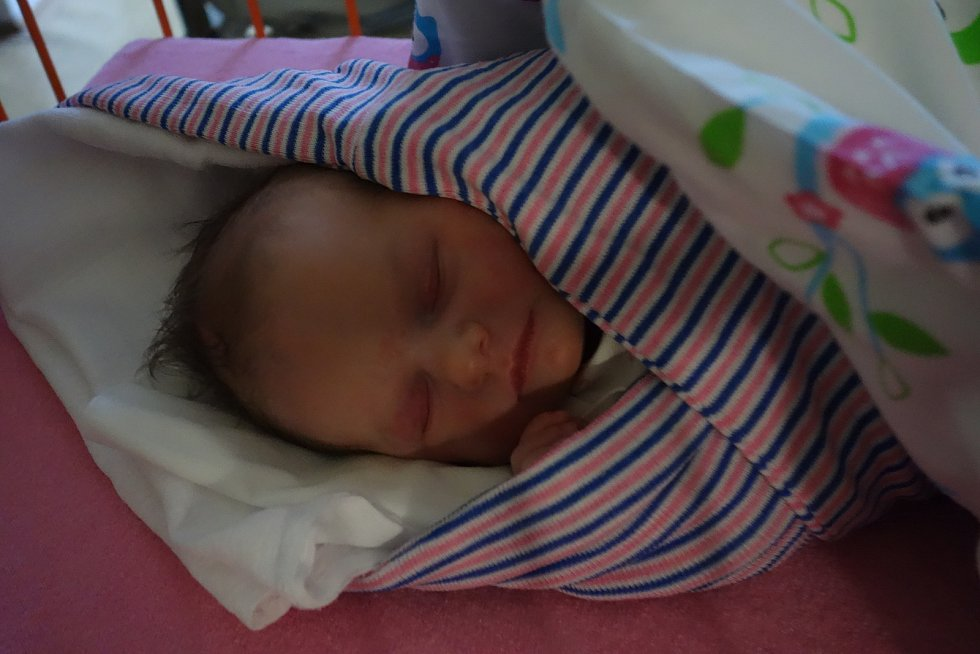 Eliška Foglarová, narozena 28. prosince 2018 v Mladé Boleslavi, míra 47 cm, váha 2720 g