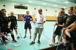 Základem tréninků starších hráčů jsou potom nácviky jednotlivých systémů: tedy kde mají hráči stát, jak se mají pohybovat...