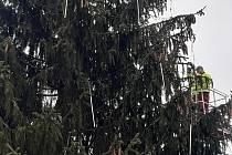 Benátky odstrojily vánoční strom Na Burse.