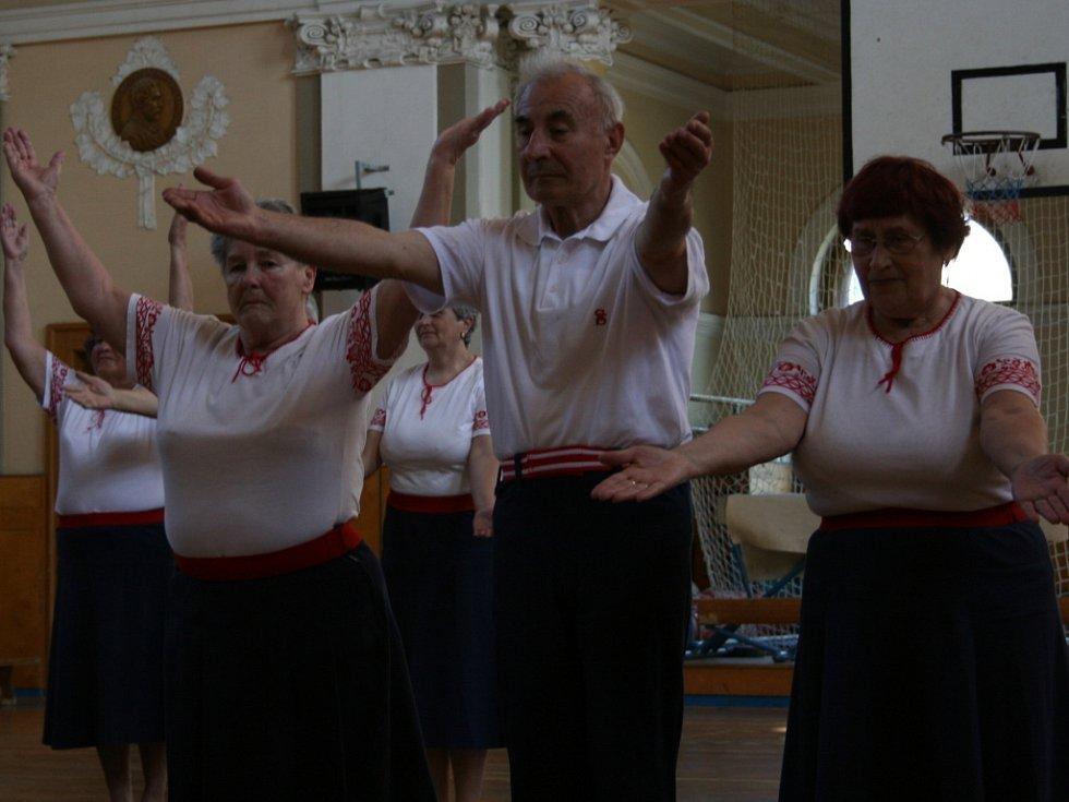 Akademie TJ Sokol Mladá Boleslav