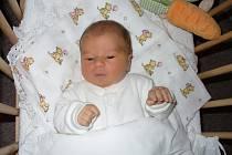 Lucinka Musilová se narodila 8. 11. Janě a Bedřichovi z Debře. Nadšený z ní byl i její bráška Kubíček.