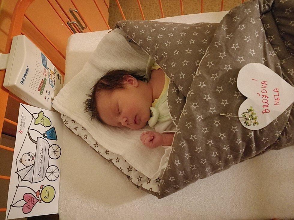Nela Brožová se narodila 28. prosince, vážila 3,62 kg a měřila 51 cm. S maminkou Martinou a tatínkem Tomášem bude bydlet v Doksech.
