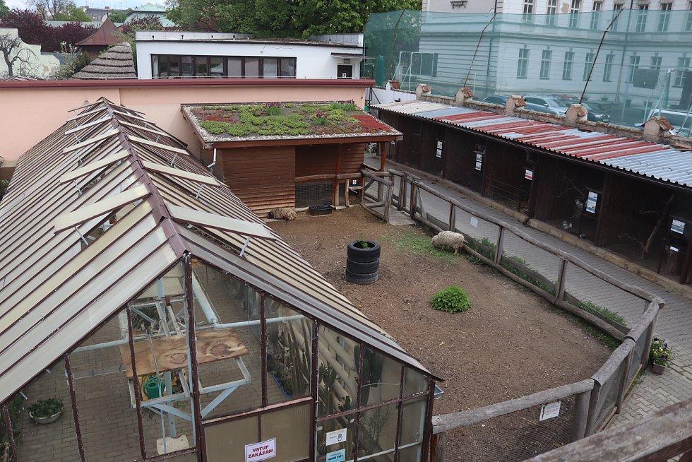 Ekocentrum Zahrada je po měsících znovu otevřené.