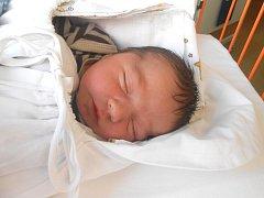 DAVID Horák se narodil 20. září mamince Květoslavě a tatínkovi Davidovi z Mladé Boleslavi. Vážil 3,8 kg a měřil 51 cm.