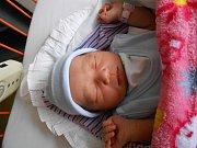 Ant Thu Dao se narodila 26. prosince, vážila 3,18 kg a měřila 49 cm.  Maminka Lan Anh a tatínek Bien si ji odvezou domů do Obrub.