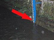 Klenice u Zimního stadionu. Kde je první povodňový stupeň ukazuje šipka.