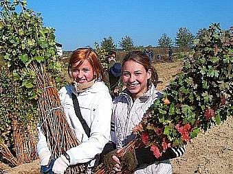 Dívky ze zahradniceké školy na Mělníku