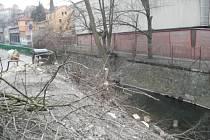 Nepovolené kácení stromů Na Šafranici