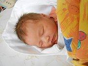 Valerie Kovařičová přišla na svět 6. listopadu s mírami 3,17 kg a 48 cm. S maminkou Barborou a tatínkem Radkem bude bydlet v Dolánkách.