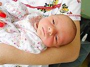 Sylva Cachová přišla na svět 23. listopadu 2018 s mírami 2,47 kg a 47 cm. Maminka Lucie a tatínek Ctibor si ji odvezou domů do Zdětína, kde už se na ni těší bráška Adámek.