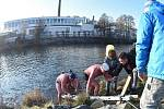 První ročník soutěže zimních plavců v řece Jizeře.