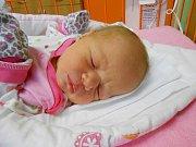 Anna Koudelková se narodila 30. prosince, vážila 3,63 kg a měřila 52 cm. Maminka Pavla a tatínek Miloš si ji odvezou domů do Benátek nad Jizerou, kde už se na ni těší sourozenci Miloš, Jiří a Kateřina.