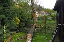 Silný vítr v ulici Pod Borkem shodil strom