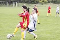Školský pohár 2013 - Dolní Bousov
