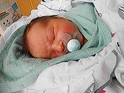 Kryštof Menzel se narodil 7. ledna, vážil 3,95 kg a měřil 52 cm.
