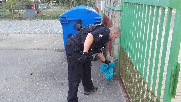 Strážníci provádí sběr uhynulých zvířat ve městě