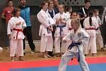 Vánoční cena karate 2015