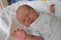 VERONIKA Šonová se narodila 8. srpna Haně a Miroslavovi ze Zdětína. Vážila 2,83 kilogramů a měřila 49 centimetrů.