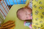 Amálie Šíbová se narodila 29. ledna, vážila 3,41 kg a měřila 48 cm. Maminka Malvína a tatínek Jiří si ji odvezou domů do Horních Rokytňan.