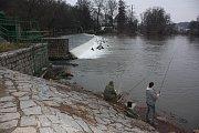 Nedělní stav řeky Jizery v Mladé Boleslavi - Podlázkách.
