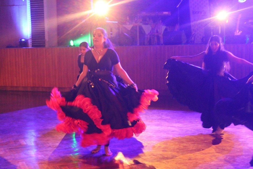 2. romský charitativní ples