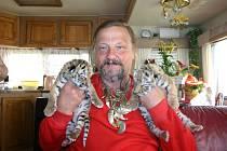 Principál Jaromír Joo s dvěma ze tří nově narozených tygříčat