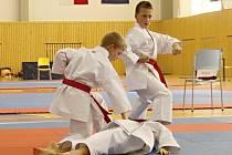 Liberecký pohár v karate