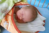 Honzík Štejfa se narodil 22. října, vážil 3,05 kg a měřil 50 cm. S maminkou Veronikou a tatínkem Honzou bude bydlet v Mladé Boleslavi.