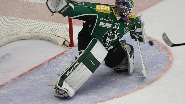 Hokejový brankář Marek Schwarz