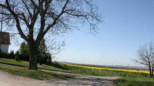 Starostku Obrub Věru Kůnovou napadl neznámý útočník na této cestě poblíž obce