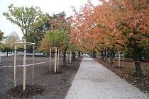 Park na Výstavišti v rekonstrukci