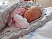 Alžběta Muzikantová se narodila 18. ledna, vážila 3,06 kg a měřila 49 cm. S maminkou Zuzanou a tatínkem Janem bude bydlet v Mladé Boleslavi.