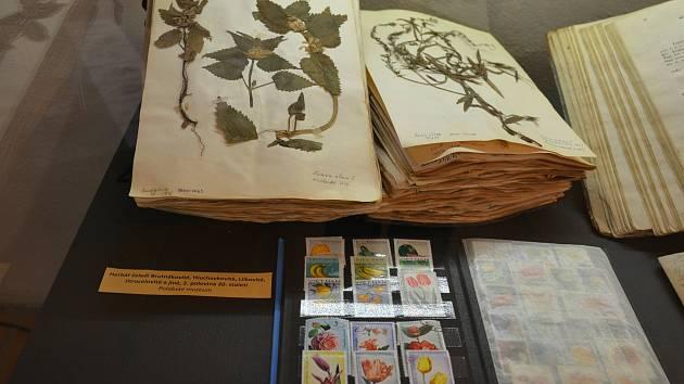 Výstava Kouzelný herbář v Dobrovických muzeích