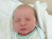Vojtěch Korecký se narodil 8. listopadu v liberecké porodnici mamince Sylvii Korecké z Brandýsa nad Labem. Vážil 4,3 kg a měřil 54 cm.