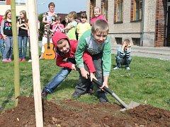 Mladé stromky v parku před školou sázely děti, starostka i ředitelka.