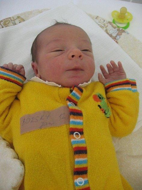 Jan Borský se se rodičům Karle a Janovi z Tišic narodil 4. listopadu 2007, vážil 3,20 kilogramu a měřil 50 centimetrů.