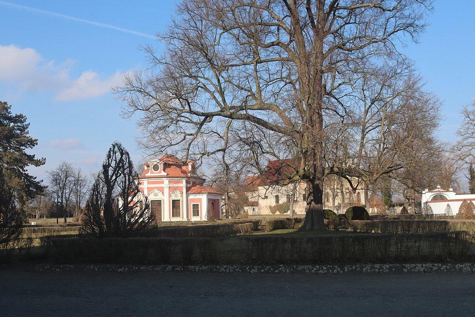 Procházka po zámeckém parku v Mnichově Hradišti.