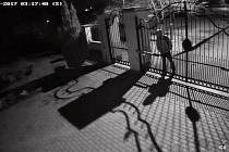 Průmyslová kamera umístěná u brány rodinného domu zaznamenala ve čtvrt na čtyři nad ránem, tedy v době, kdy podle policie mohl čin probíhat, muže v bundě s kapucí a batohem na zádech, jak skrz bránu nahlíží do zahrady.