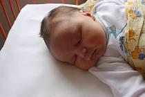 Domů do Bělé pod Bezdězem si Adéla Košťálová a Ondřej Pabel odvezou syna Ondráška (4,2 kg a 52 cm), který se narodil v úterý 21. dubna.